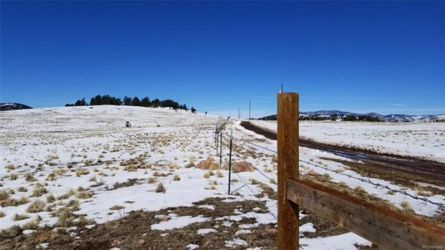 1 & 2 Alpine Ranch Circle, Canon City, CO 81212 (#4548680) :: Bring Home Denver with Keller Williams Downtown Realty LLC
