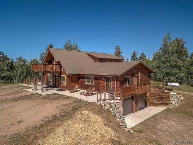 10257 W Us 24, Divide, CO 80814 (#4555109) :: Chateaux Realty Group