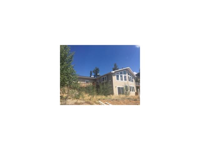 941 Crooked Rock Path, Como, CO 80432 (MLS #4557746) :: 8z Real Estate