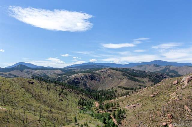 Cochise Trail, Pine, CO 80470 (#4570991) :: The DeGrood Team