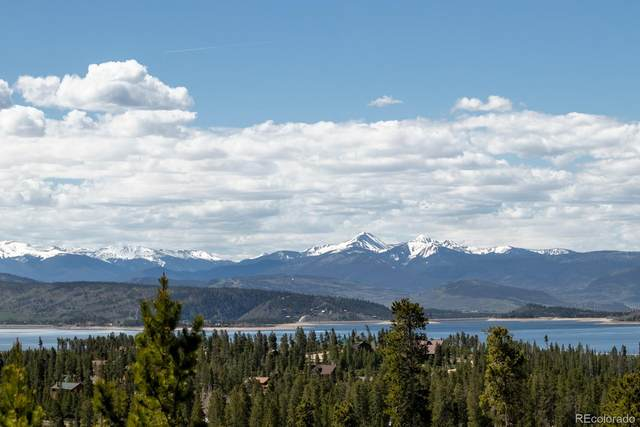 110 County Road 4454, Grand Lake, CO 80447 (#4599058) :: The DeGrood Team