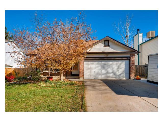 6010 S Quail Way, Littleton, CO 80127 (#4606141) :: Colorado Team Real Estate