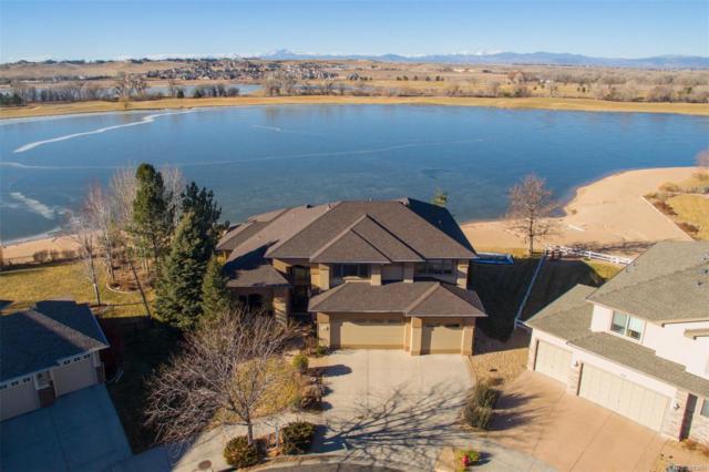 313 Habitat Bay, Windsor, CO 80550 (#4611649) :: House Hunters Colorado