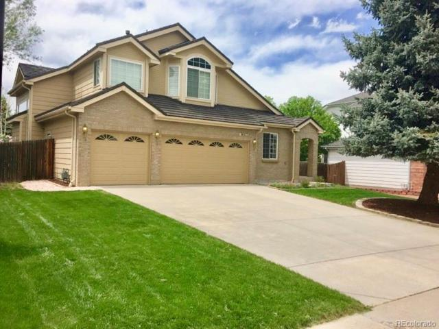 9663 Las Colinas Drive, Lone Tree, CO 80124 (#4617189) :: Structure CO Group