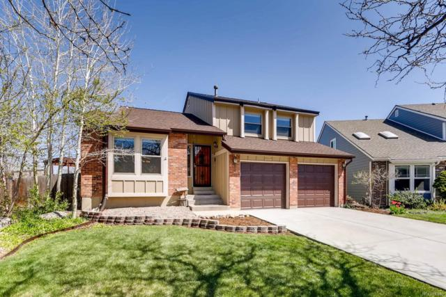 7348 S Mount Holy Cross, Littleton, CO 80127 (#4631672) :: The Pete Cook Home Group
