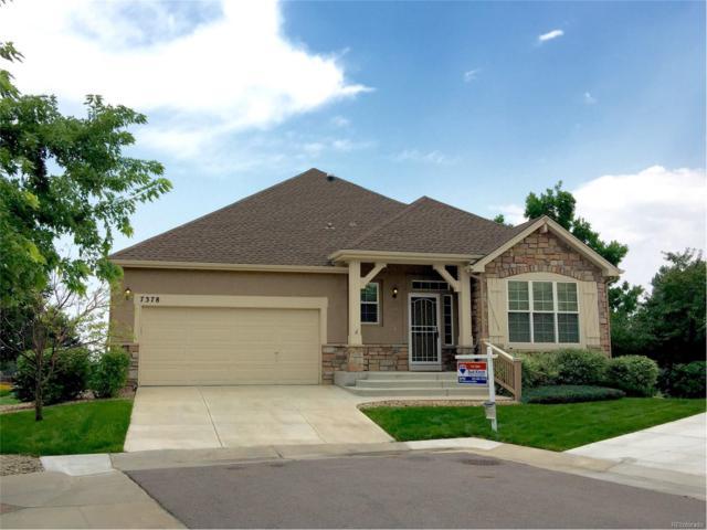 7378 S Oak Court, Littleton, CO 80127 (MLS #4633897) :: 8z Real Estate