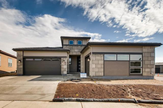 11200 Sweet Cicely Lane, Parker, CO 80134 (#4668459) :: The Peak Properties Group