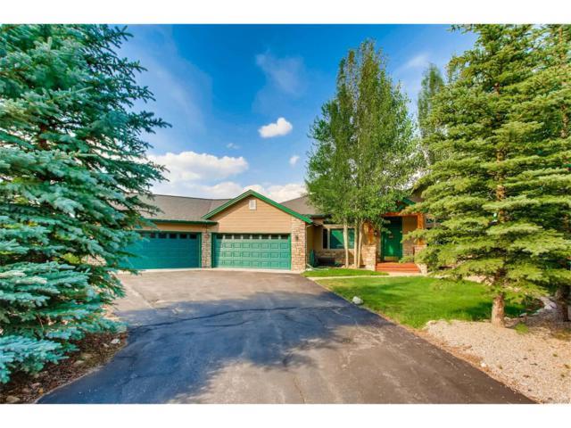 606 Willowbrook Road, Silverthorne, CO 80498 (MLS #4668760) :: 8z Real Estate