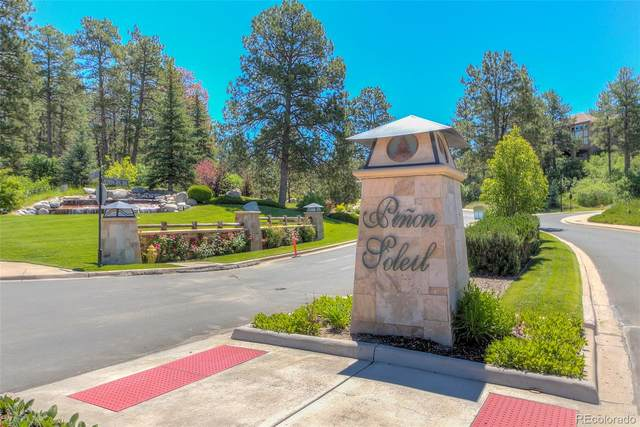 1839 Avenida Del Sol, Castle Rock, CO 80104 (#4670858) :: The HomeSmiths Team - Keller Williams