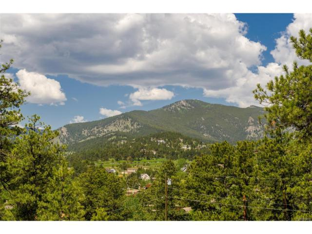 3377 Bronco Lane, Evergreen, CO 80439 (#4702694) :: Structure CO Group