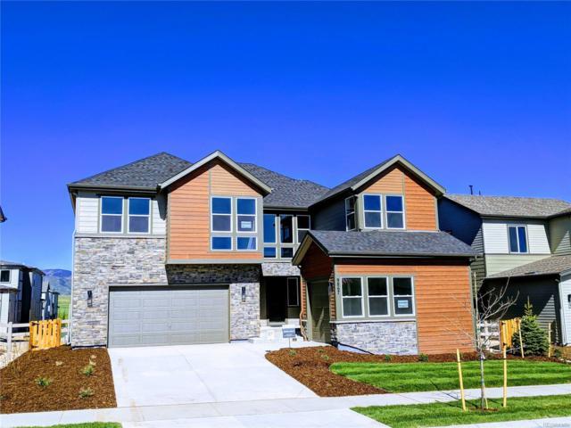 9867 Hilberts Way, Littleton, CO 80125 (#4710773) :: Wisdom Real Estate