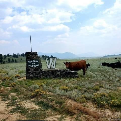 1529 Yellowstone Road, Hartsel, CO 80449 (MLS #4710788) :: Find Colorado