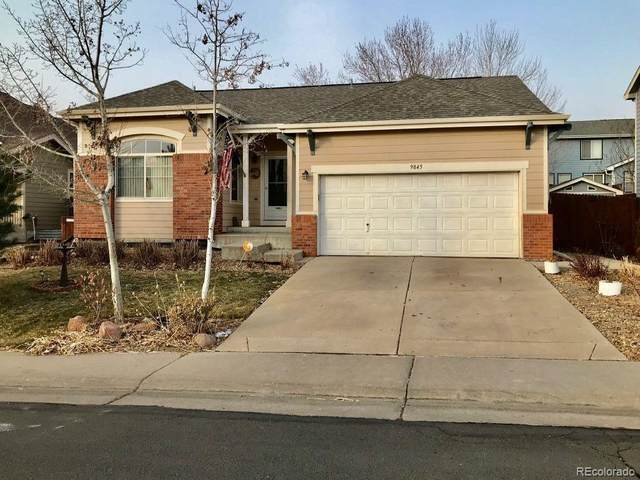 9845 Harris Street, Thornton, CO 80229 (#4714965) :: iHomes Colorado