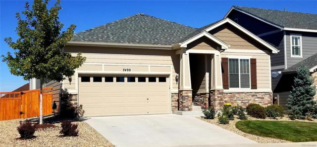 7499 Blue Water Drive, Castle Rock, CO 80108 (#4735377) :: Sellstate Realty Pros