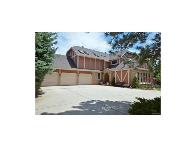 14595 Sun Hills Drive, Colorado Springs, CO 80921 (MLS #4771303) :: 8z Real Estate