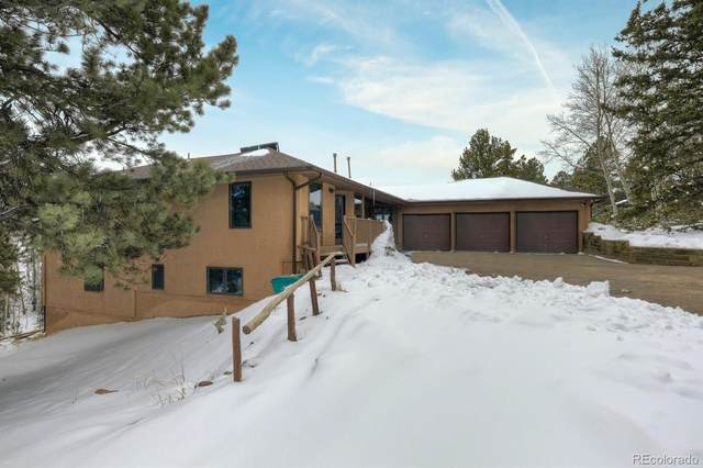 82 Ryolite Road, Florissant, CO 80816 (#4776728) :: The Dixon Group