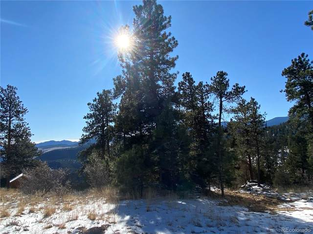350 Ptarmigan Trail, Bailey, CO 80421 (#4781595) :: iHomes Colorado