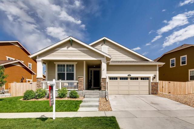 11816 Phoebe Street, Parker, CO 80134 (#4784129) :: HomeSmart Realty Group