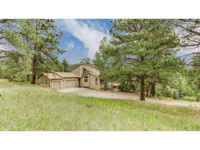 576 Patty Drive, Evergreen, CO 80439 (MLS #4803244) :: 8z Real Estate