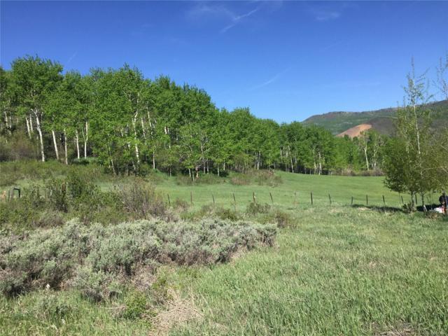 29770 Riffle Run, Oak Creek, CO 80467 (#4813390) :: The Healey Group