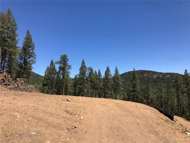 21549 Trappers Trail, Morrison, CO 80465 (#4825793) :: Wisdom Real Estate