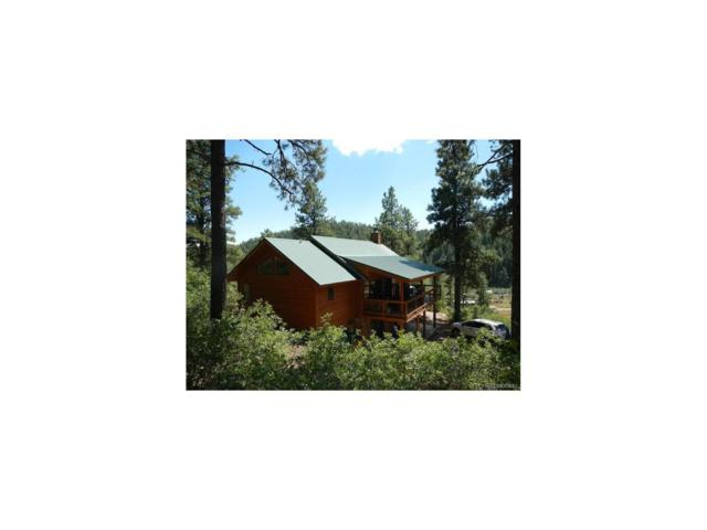 10999 County Road 502, Bayfield, CO 81122 (MLS #4826316) :: 8z Real Estate