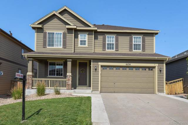 6230 Blue Water Circle, Castle Rock, CO 80108 (#4829264) :: Berkshire Hathaway HomeServices Innovative Real Estate