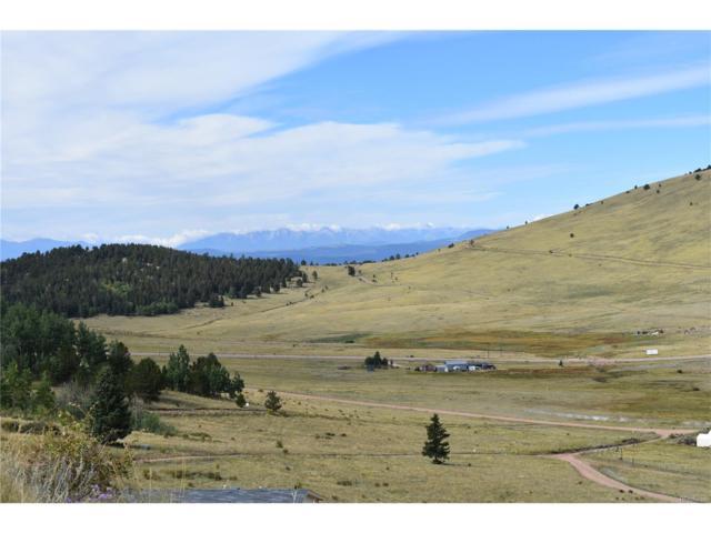 Private Road, Cripple Creek, CO 80813 (MLS #4831096) :: 8z Real Estate