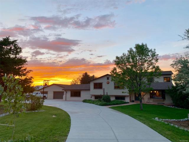 7711 W Trail North Drive, Littleton, CO 80125 (MLS #4831161) :: Bliss Realty Group