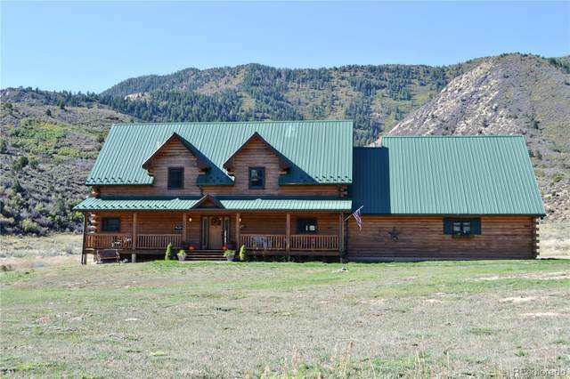 219 Big Dog Road, Rifle, CO 81650 (#4842078) :: The Dixon Group