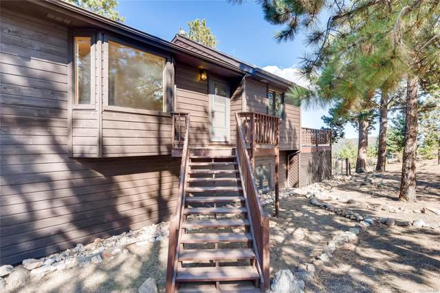 163 Doe Circle, Bailey, CO 80421 (MLS #4852249) :: Bliss Realty Group