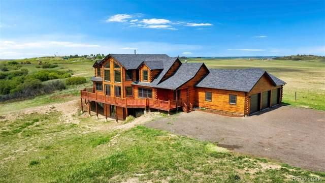 6995 Dahlberg Road, Franktown, CO 80116 (MLS #4861825) :: 8z Real Estate