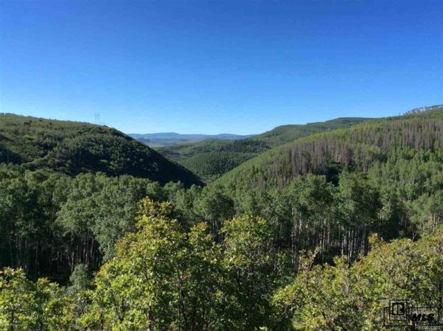 24425 Lone Tooth Trail, Oak Creek, CO 80467 (MLS #4864069) :: 8z Real Estate