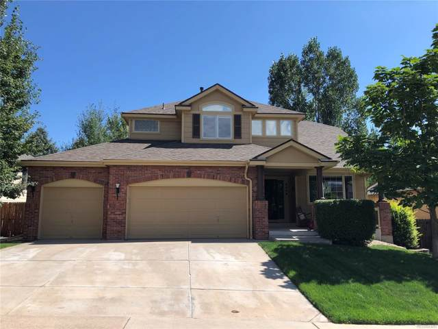 6446 S Robb Way, Littleton, CO 80127 (#4864100) :: The HomeSmiths Team - Keller Williams