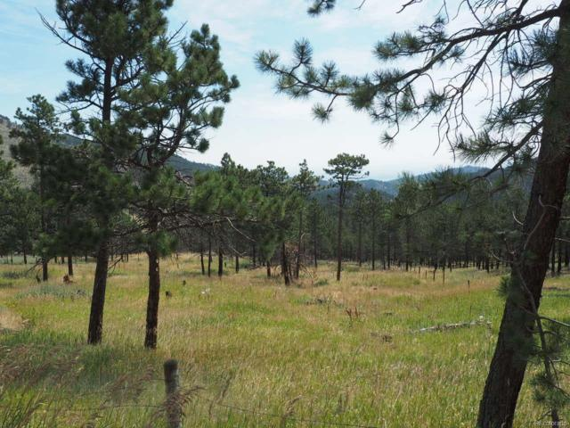 94 County Road 83, Boulder, CO 80302 (#4885659) :: The Peak Properties Group