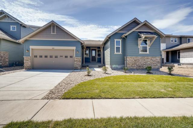 6802 W Asbury Place, Lakewood, CO 80227 (#4892113) :: HomePopper