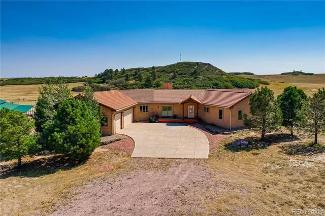 12000 S State Highway 83, Franktown, CO 80116 (#4910732) :: The Healey Group
