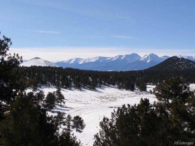 380 Jake Road, Westcliffe, CO 81252 (#4914599) :: The Gilbert Group