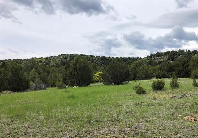 0 Siloam Road, Beulah, CO 81023 (MLS #4928640) :: 8z Real Estate