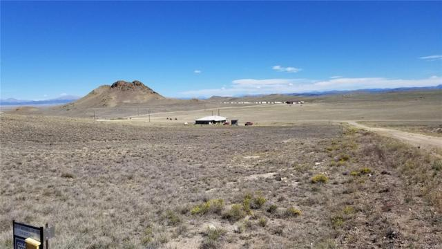 499 Saddle Trail, Hartsel, CO 80449 (#4940219) :: James Crocker Team