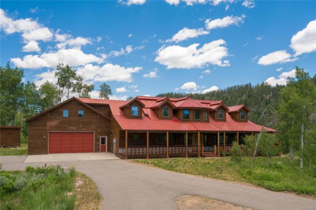 56025 Moss Drive, Clark, CO 80428 (#4952053) :: Wisdom Real Estate