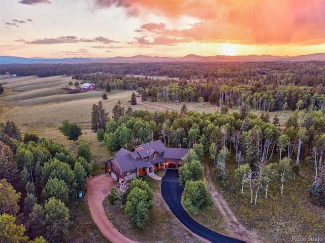 1471 County 51 Road, Divide, CO 80814 (#4957606) :: Mile High Luxury Real Estate