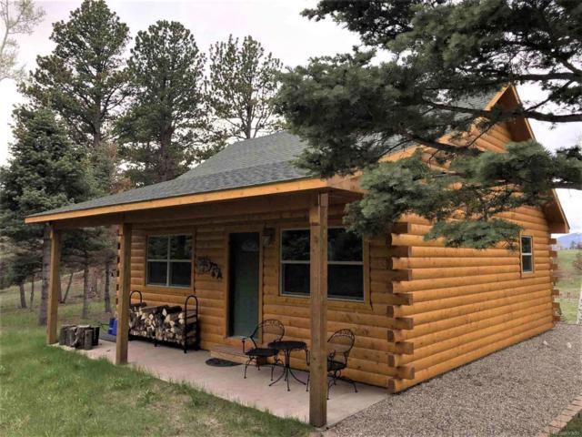 1101 Emery Loop, Fort Garland, CO 81133 (MLS #4957690) :: 8z Real Estate