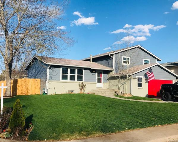 6956 S Wadsworth Court, Littleton, CO 80128 (#4961743) :: House Hunters Colorado