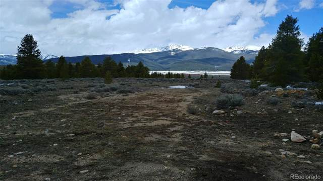 19955 Us Highway 24, Leadville, CO 80461 (#4966123) :: Colorado Home Finder Realty
