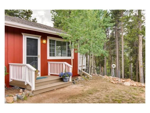 31977 Stenzel Drive, Conifer, CO 80433 (MLS #4966312) :: 8z Real Estate