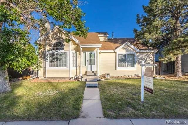 360 N Wagonwheel Trail, Castle Rock, CO 80104 (MLS #4983598) :: 8z Real Estate