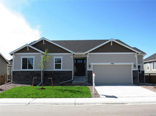7248 Greenwater Circle, Castle Rock, CO 80108 (#5011576) :: Wisdom Real Estate