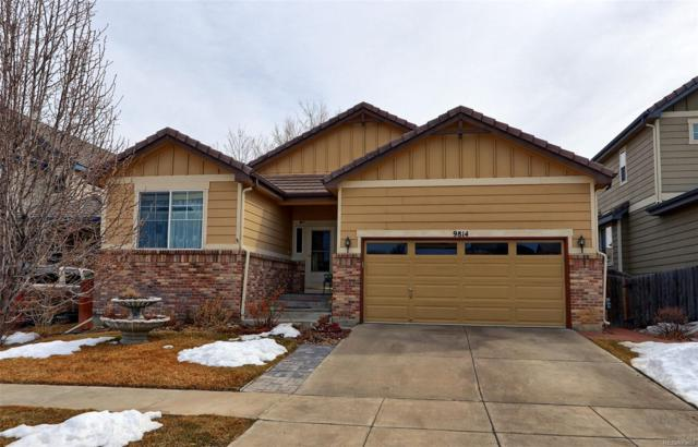 9814 Norfolk Street, Commerce City, CO 80022 (#5014314) :: Bring Home Denver