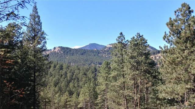 5217 Mountain Vista Lane, Evergreen, CO 80439 (MLS #5018043) :: 8z Real Estate